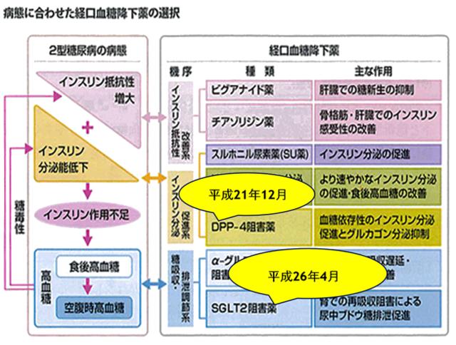 病態に合わせた経口血糖降下薬の選択の図