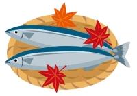 青魚サンマ