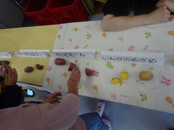 帯広の森幼稚園の食育活動に行かせていただきました